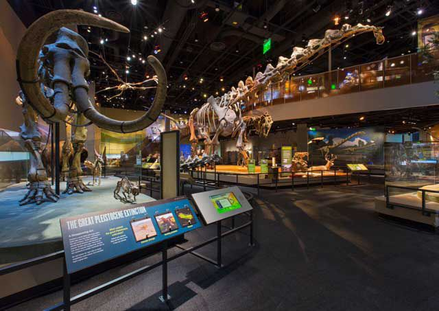 50 Free Things To Do in Dallas – Dallas Texas Tourist Attractions Map