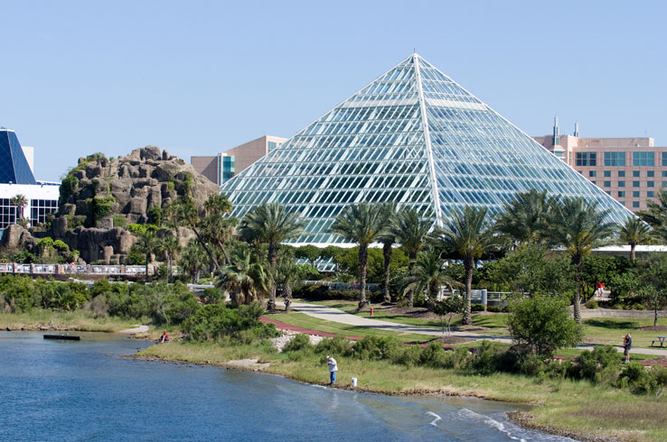 Moody Gardens is a ecological attraction in Galveston that showcases exotic animals from around the world.
