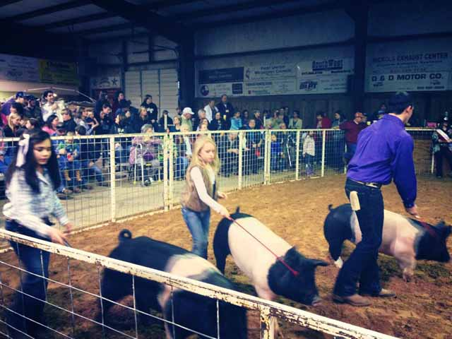 Events In Mineral Wells Tour Texas