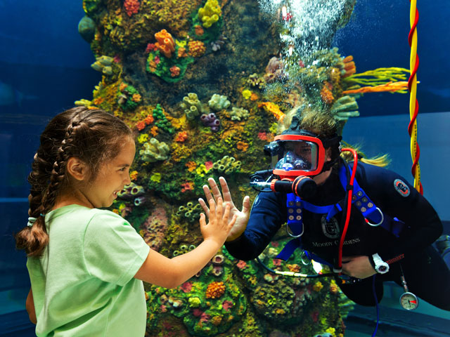 Moody Gardens Hours & Admission Prices | Tour Texas