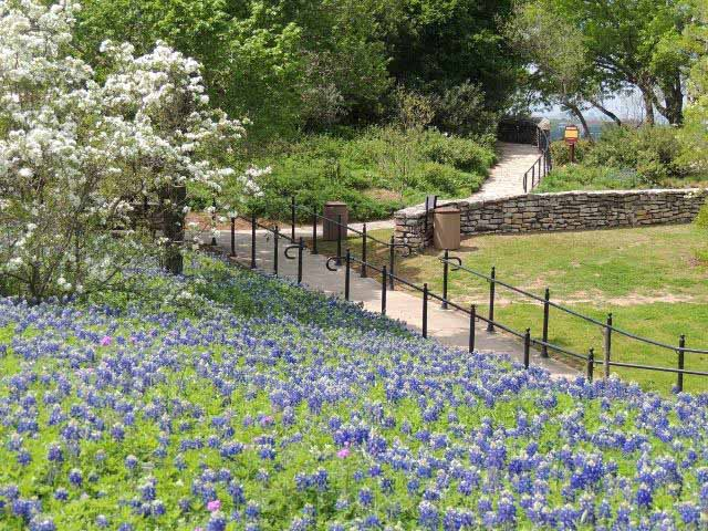 San Antonio Botanical Garden Tour Texas