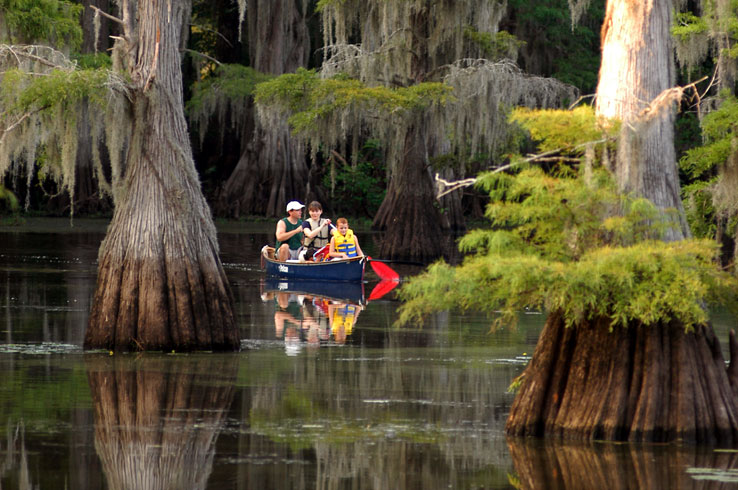 Paddle along the still waters between aged cypress trees at Caddo Lake State Park.