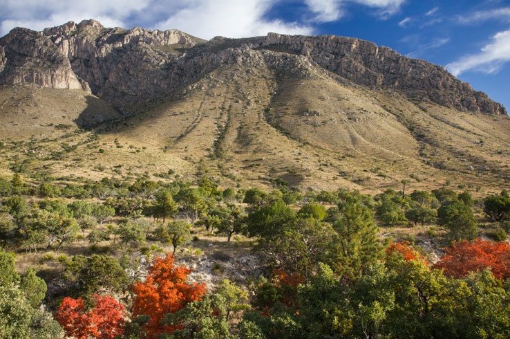 A stunning view of Guadalupe Mountains National Park.