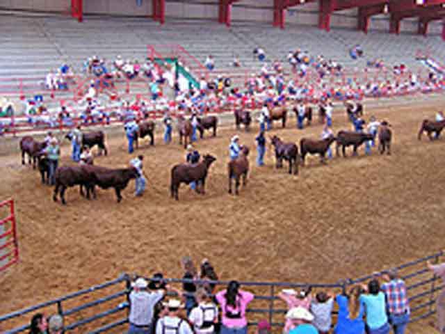 Athens Tour Texas