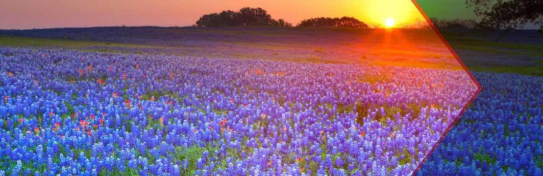 Ennis Tour Texas