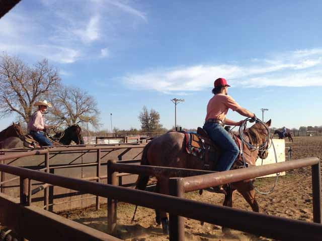 fun things to do in mineral wells tx