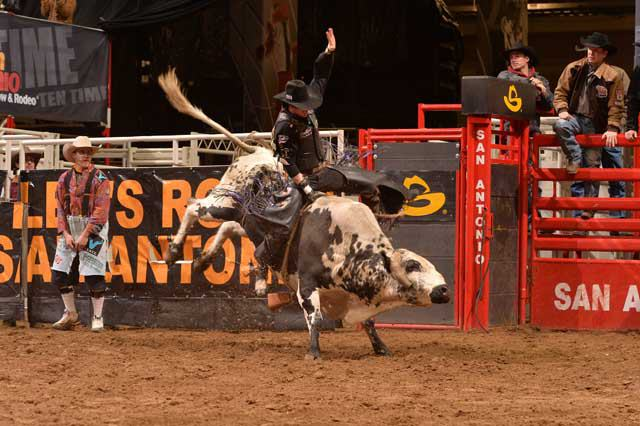 San Antonio Stock Show Amp Rodeo Tour Texas