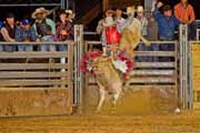 Tejas Rodeo Bull Ride